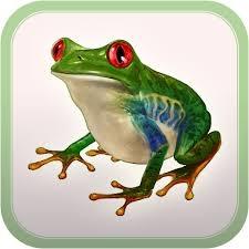 Log_a_Frog